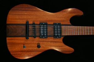 The Endangered Alphabets Guitar